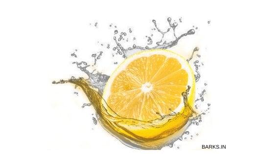 Lemon for fighting off ticks in dogs