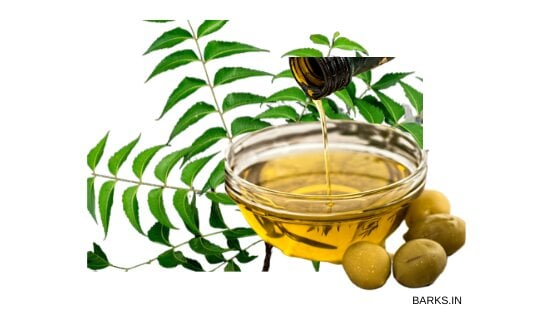 Neem Oil for dog tick home remedy