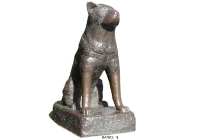 Bronze statue of Hachiko the loyal dog