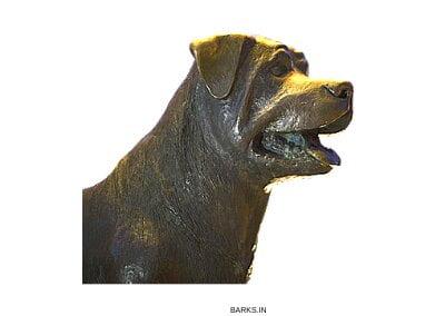 Rottweiler statue